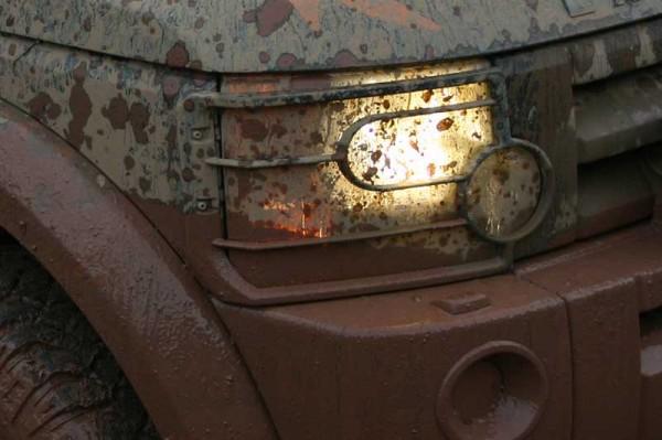 Lampenschutzgitter D3 Britpart vorne