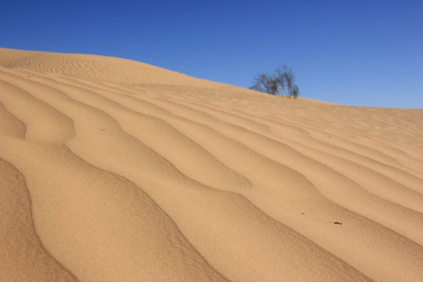 Marokko 2015 Offroad-Wüste pur!